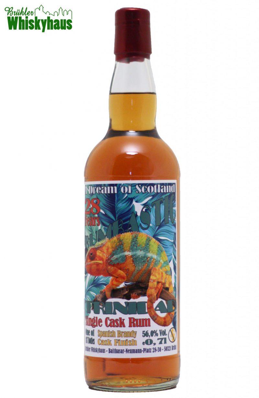 Trinidad 28 Jahre - Vintage 1991 - Ex-Bourbon Cask / Spanish Brandy Cask Finish - Rumbastic by A Dream of Scotland - Single Cask Rum